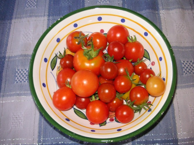 My tomato list for 2016
