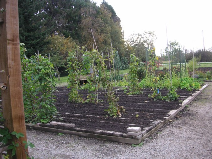 Sustainable Garden Classes are Back!