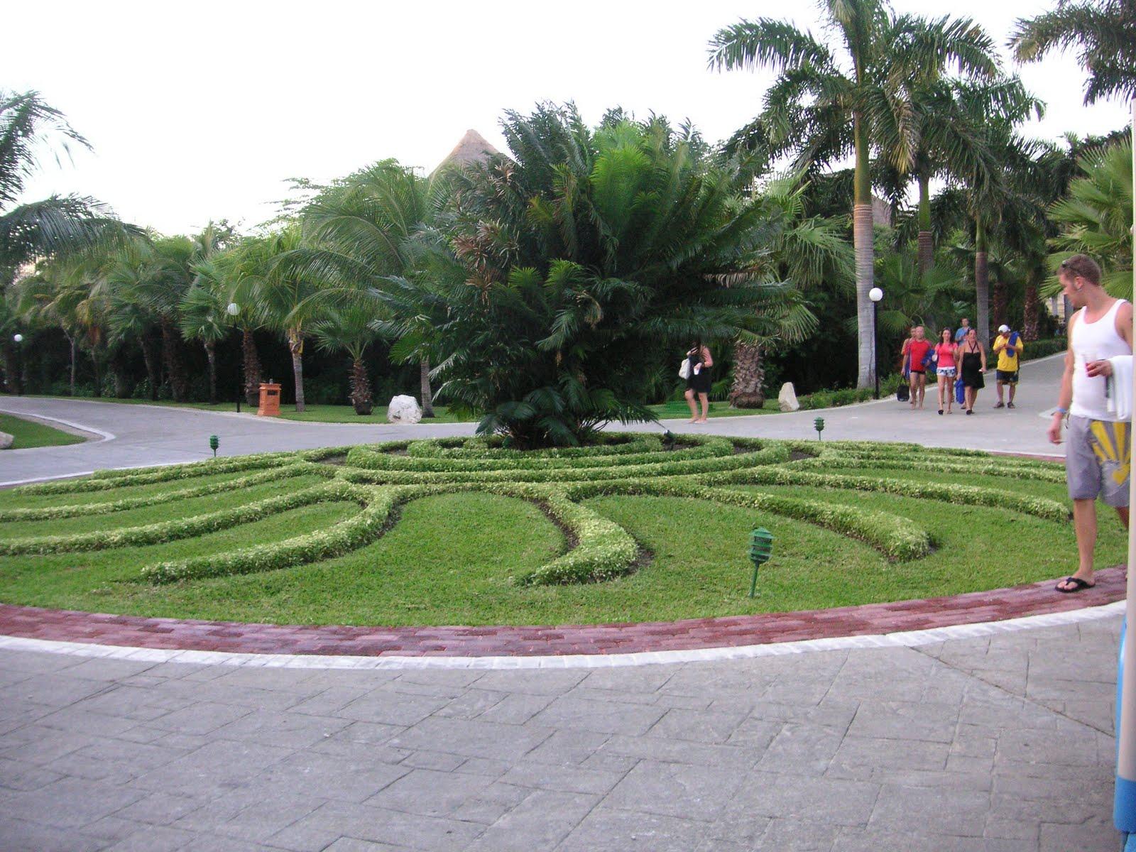 Croton That Bloomin 39 Garden