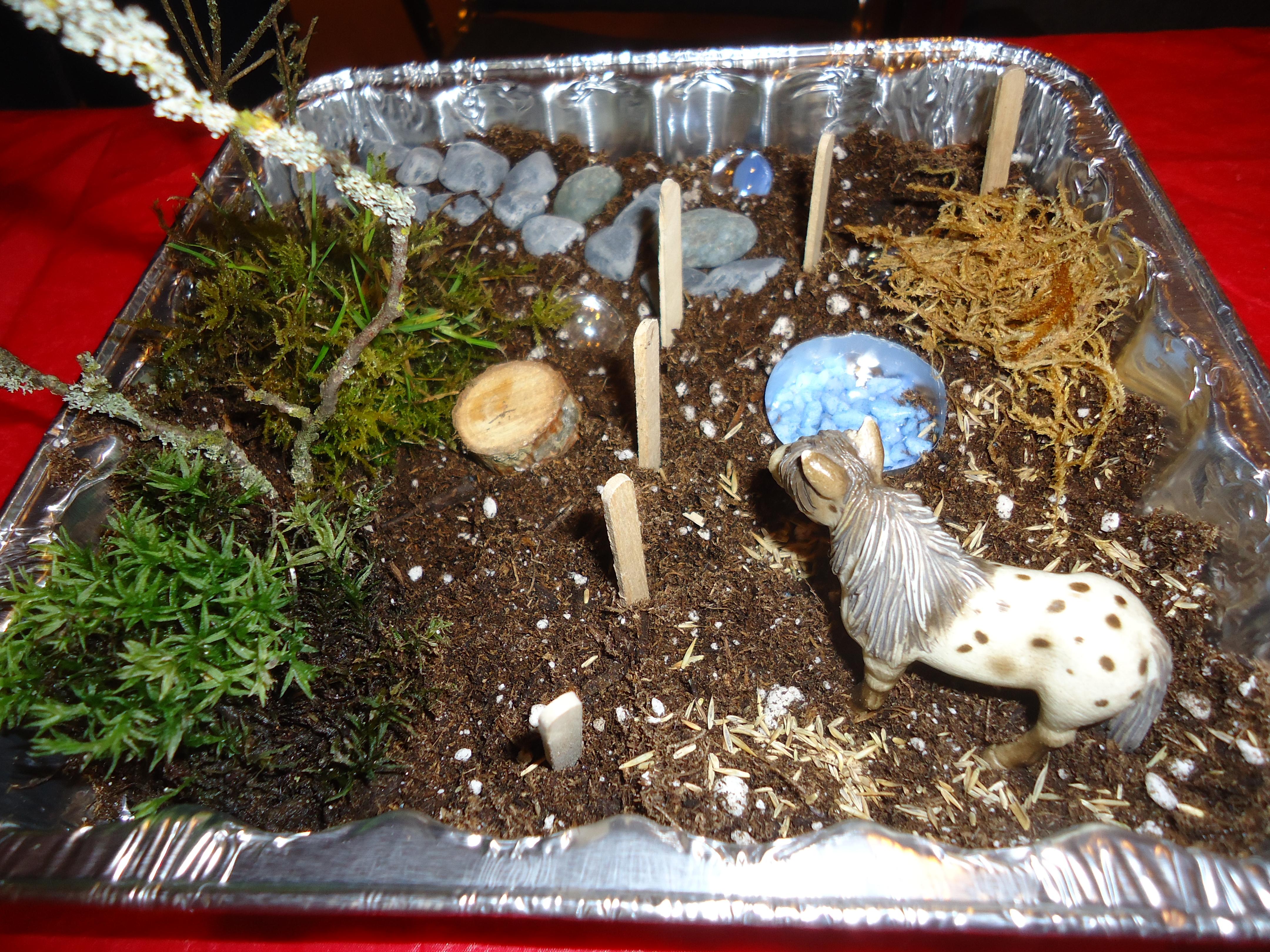 Making miniature gardens with children that bloomin 39 garden for Tray garden designs