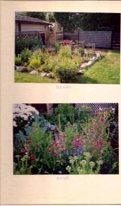 backyard 1980