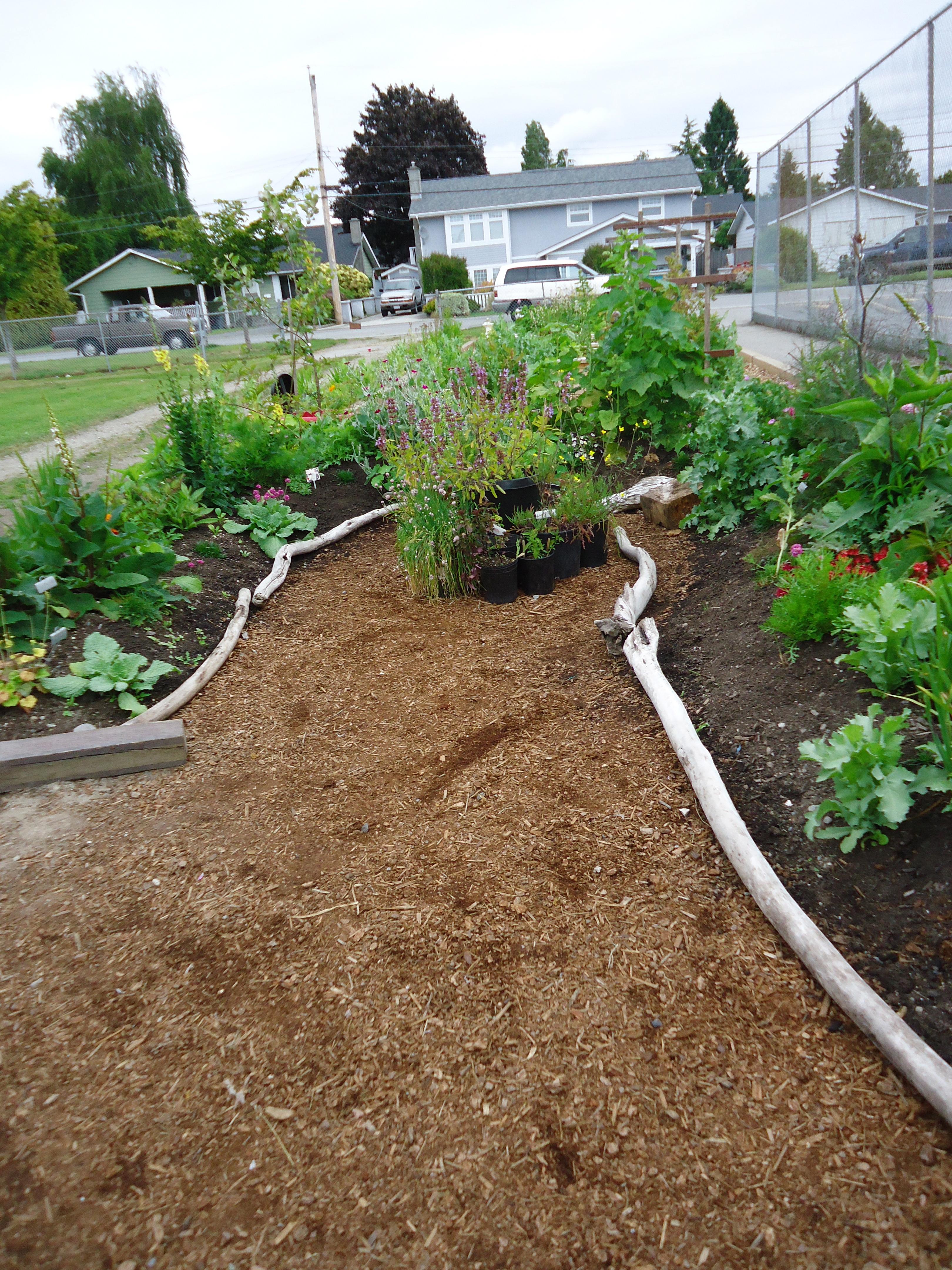 Perennial Garden Farm To School Pinterest