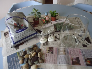 Terrarium project