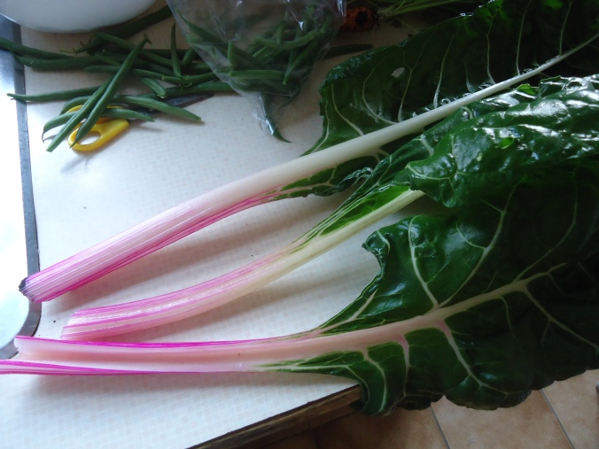 peppermint swiss chard