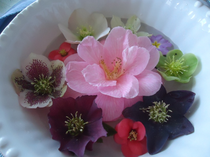 4 amazing flowers for the garden