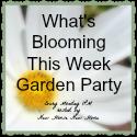 Garden-Party-button