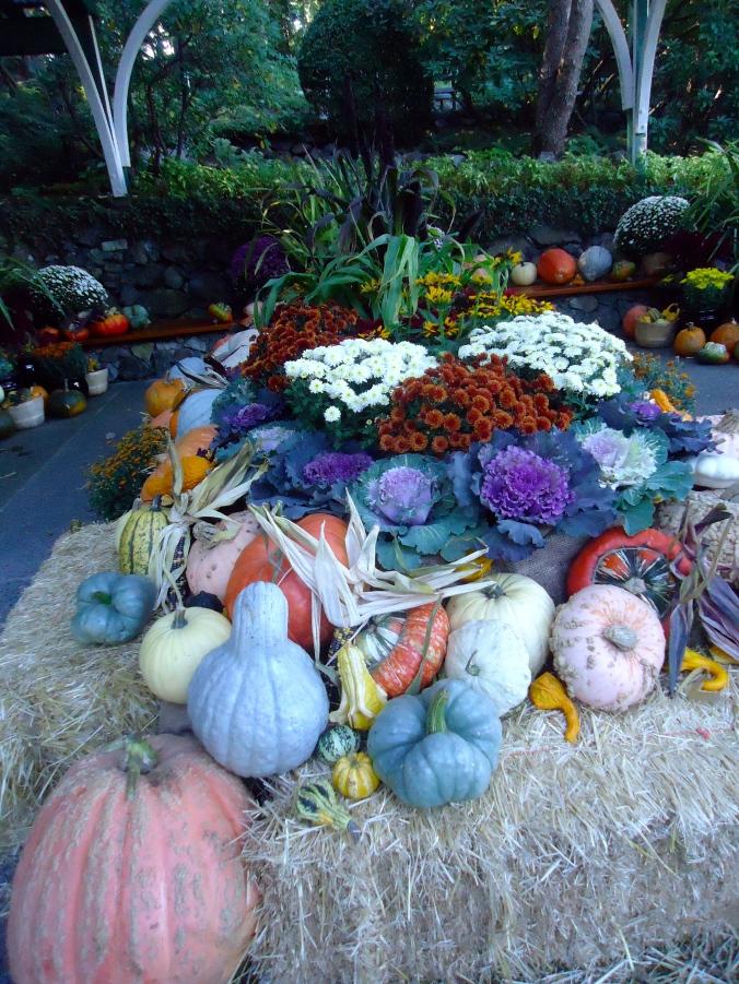 Butchart Gardens- A World Class Garden
