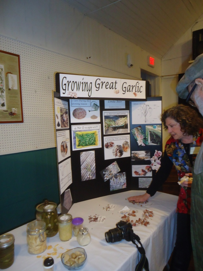 Mayne Island Seedy Saturday-How to Divide Perennials