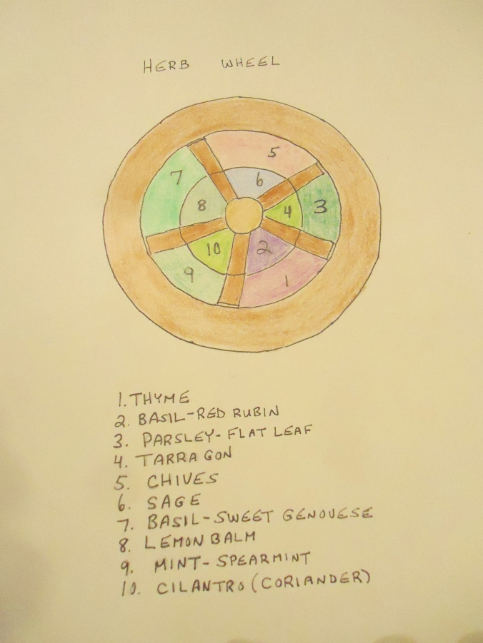 Creating a Herb Garden Wheel