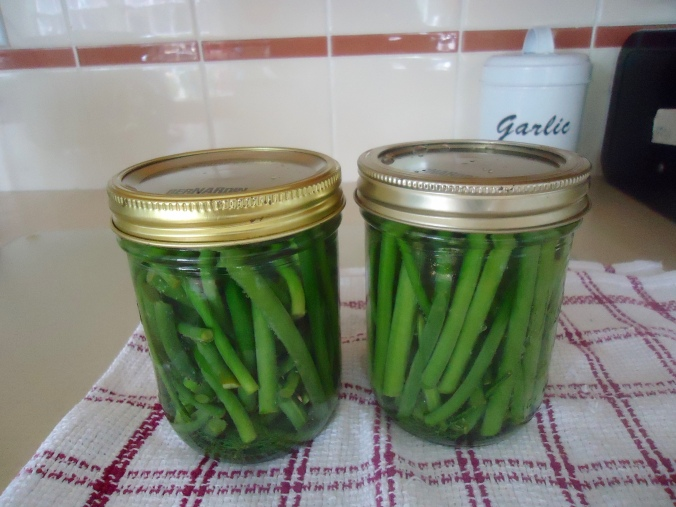 What are Garlic Scapes and How Do I use them?